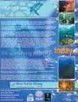 Blue Turtle full page advert