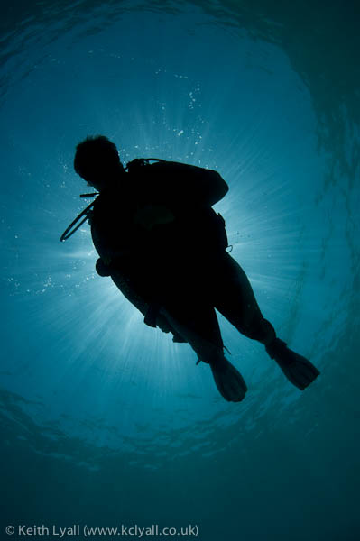 Diver silhouette, with sunburst and Snells window